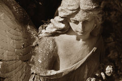 Vintage image of a sad angel on a cemetery against the backgroun Stock Images