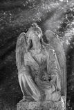 Vintage image of a sad angel on a cemetery against the background of leaves (religion, faith, holy, sin). Vintage image of a sad angel on a cemetery against the stock photos