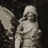 Vintage image of a sad angel on a cemetery Royalty Free Stock Images