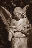 Vintage image of a sad angel on a cemetery Stock Image