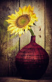 Vintage image of a single sunflower on a red vase Royalty Free Stock Photo