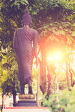 Vintage image style ,Back view on the standing Buddha statue of Royalty Free Stock Image