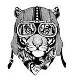 Vintage Image TIGER for t-shirt design for motorcycle, bike, motorbike, scooter club, aero club. Hand drawn image Royalty Free Stock Image
