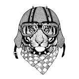 Vintage Image TIGER for t-shirt design for motorcycle, bike, motorbike, scooter club, aero club. Hand drawn image Stock Images