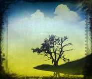Vintage image of a tree in the field Royalty Free Stock Image