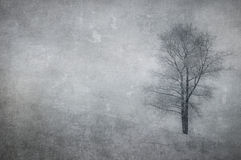 Vintage image of a tree over grunge background Royalty Free Stock Photo
