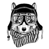 Vintage Image of WOLF for t-shirt design for motorcycle, bike, motorbike, scooter club, aero club royalty free illustration