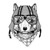 Vintage Image of WOLF for t-shirt design for motorcycle, bike, motorbike, scooter club, aero club. Hand drawn picture Royalty Free Stock Photos