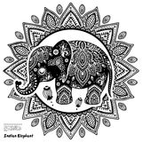Vintage Indian elephant with tribal ornaments Stock Photos