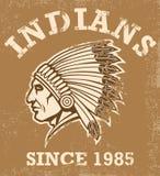 Vintage indian mascot Royalty Free Stock Photo