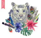 Vintage indian style tiger head illustration with Royalty Free Stock Photos