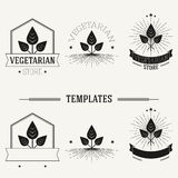 Vintage insignias and logotypes set. Stock Photography