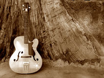 Vintage Instrument Royalty Free Stock Images
