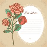 Vintage invitation card with red rose vector stock illustration