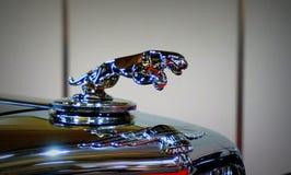 Vintage Jaguar sign Royalty Free Stock Images