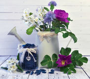 Vintage jar with honey berry and watering can with wild flowers. Beautiful summer vintage background, vegetarian and vegan concept, rural still life with berry Royalty Free Stock Photos