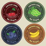 Vintage label fruits. Various fruits like chardonnay, cherry, banana, and blueberry in vintage label set royalty free illustration