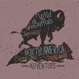 Vintage label  with grunge effect. Vintage label of  the wild buffalo .Grunge effect Royalty Free Stock Photo