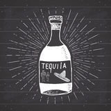 Vintage label, Hand drawn bottle of tequila mexican traditional alcohol drink sketch, grunge textured retro badge, emblem design, Stock Images
