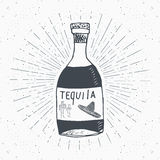 Vintage label, Hand drawn bottle of tequila mexican traditional alcohol drink sketch, grunge textured retro badge, emblem design, Stock Image