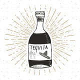 Vintage label, Hand drawn bottle of tequila mexican traditional alcohol drink sketch, grunge textured retro badge, emblem design, Stock Photo