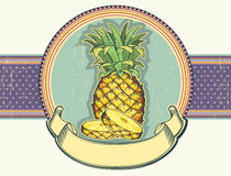 Pineapple vintage label illustration on old paper. Stock Photos