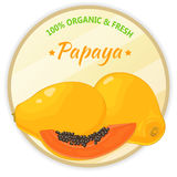Vintage label with papaya isolated on white background in cartoon style. Vector illustration. Fruit and Vegetables Stock Images