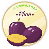 Vintage label with plum isolated on white background in cartoon style. Vector illustration. Fruit and Vegetables Stock Photography