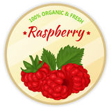Vintage label with raspberry isolated on white background in cartoon style. Vector illustration. Fruit and Vegetables. Vintage label with raspberry isolated on Royalty Free Stock Photos