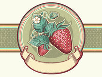 Vintage label with Red strawberries.Vector illustr Royalty Free Stock Photos