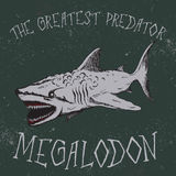 Vintage label with shark-Megalodon. Typography design for t-shirts Royalty Free Stock Photos
