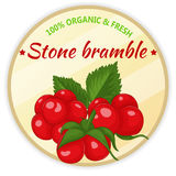 Vintage label with stone bramble isolated on white background in cartoon style. Vector illustration. Fruit and Royalty Free Stock Photography