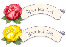Vintage Label Tags with Damask Roses Royalty Free Stock Photo