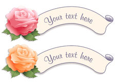 Vintage Label Tags with Garden Roses Royalty Free Stock Images