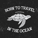 Vintage label with turtle. Vintage style.Typography design for t-shirts Royalty Free Stock Photos