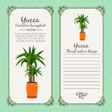 Vintage label with yucca plant. Vintage label template with decorative yucca plant in pot, vector illustration vector illustration