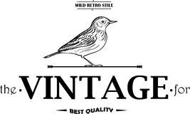 Vintage Labels or Badges Birds Stock Photography