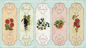 Vintage labels with berries Royalty Free Stock Photography
