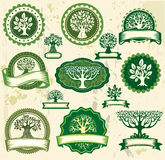 Vintage labels with trees vector illustration