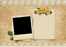 Vintage lace background with old polaroid-frame and rose Royalty Free Stock Photos