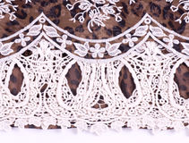 Vintage lace with flowers Stock Images