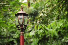 Vintage lamp post over greenery Royalty Free Stock Image
