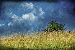 Vintage Landscape Royalty Free Stock Images