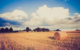Vintage landscape of straw bales on stubble field Royalty Free Stock Images