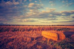 Vintage landscape of straw bales on stubble field Royalty Free Stock Photos