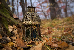 Vintage lantern in the autumn forest Royalty Free Stock Photos
