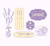 Vintage lavender background, aromatherapy and spa. Packaging  vector design Stock Photography
