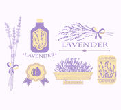 Vintage lavender background, aromatherapy and spa. Packaging  vector design Stock Photo
