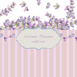 Vintage Lavender wreath card. Watercolor gentle elegant flowers decor. Vector floral retro frame for greeting cards, wedding, invitations Stock Photo