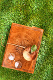 Vintage leather book, glasses and apple Royalty Free Stock Images